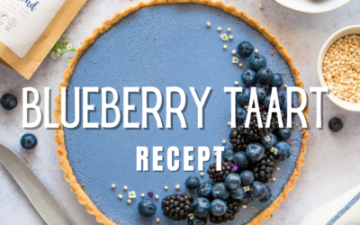 Blueberry Taart